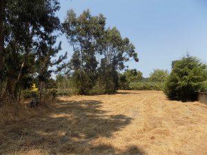 Foz do Arelho terreno para construção de 3 moradias