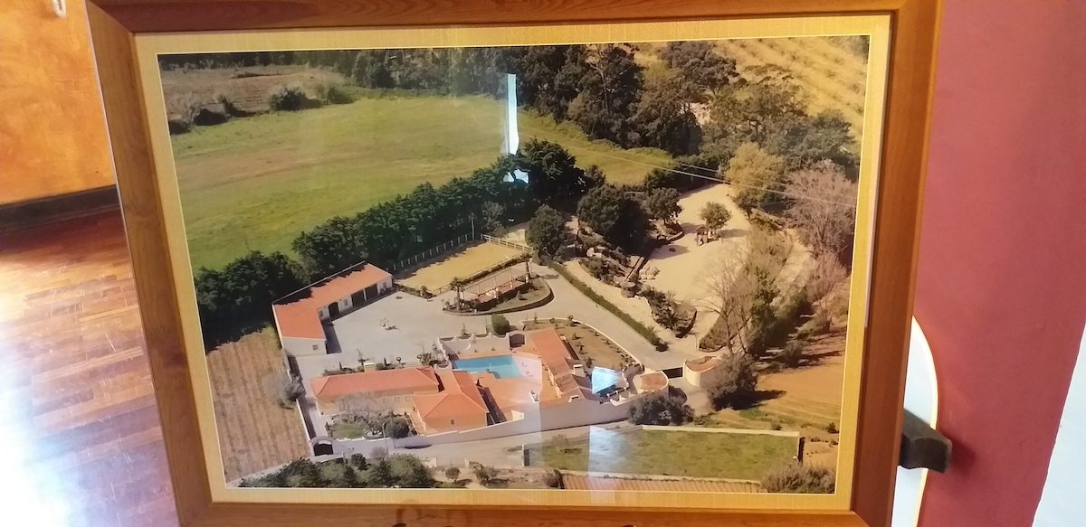 Luxury equestrian farm near Óbidos