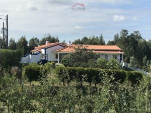 Amazing detached 4-bedroom villa Caldas da Rainha